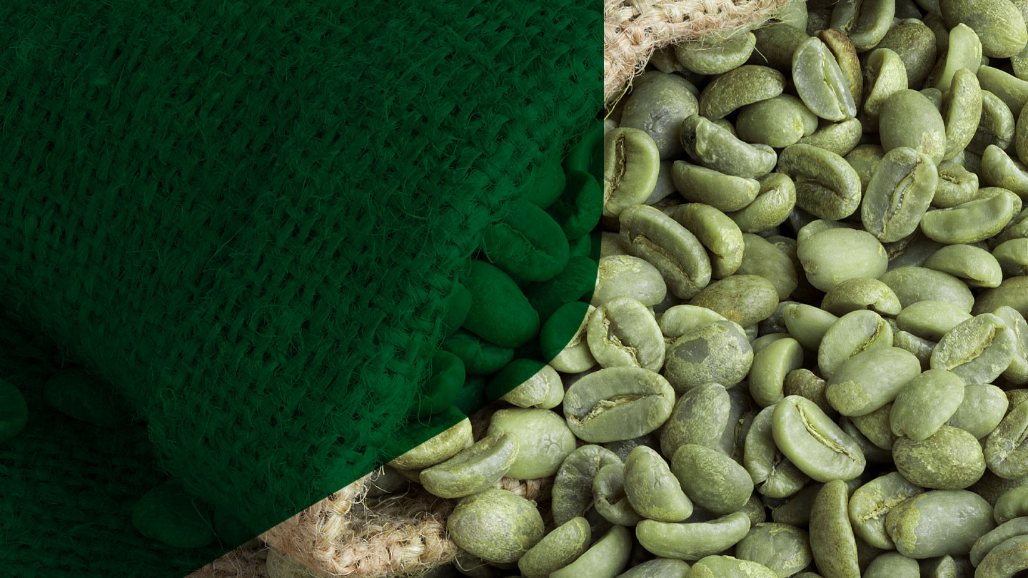 Green Coffee Processing